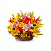 Assorted colour lilies in a basket