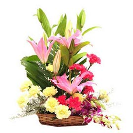 Basket of 4 Purple orchid 4 Pink lili 6 yellow carnation 6 red carnations