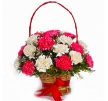 24 Red and White Carnations basket