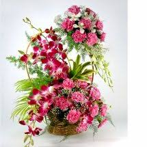 18 Pink Carnations and 6 Purple orchids Basket