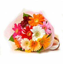 10 Gerberas bouquet