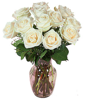 Dozen White Roses in a Vase