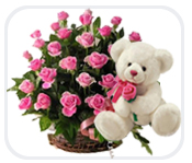 PINK Teddy, 2 dozen Pink roses in same basket