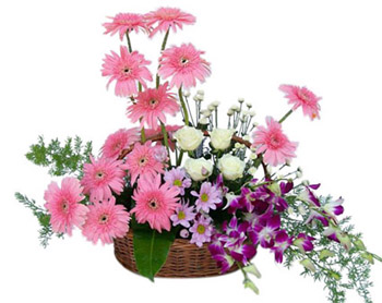 Purple Orchids White roses Pink Gerberas basket