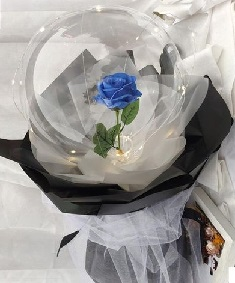 Transparent Balloon with 1 blue rose inside and wrapped in white and black wrapping and led fairy light string