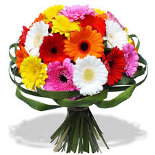 30 Gerberas bouquet