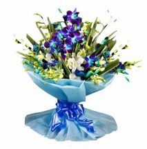 10 Blue Orchids Hand Tied