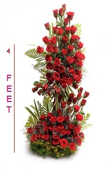 Four Foot Tall Arrangement of 75 Red Roses