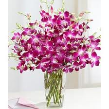 10 Purple orchids vase