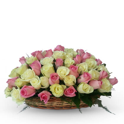 18 Pink and lemon Roses