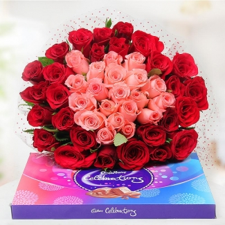 12 Pink and red roses Bunch + Cadburys celebrations