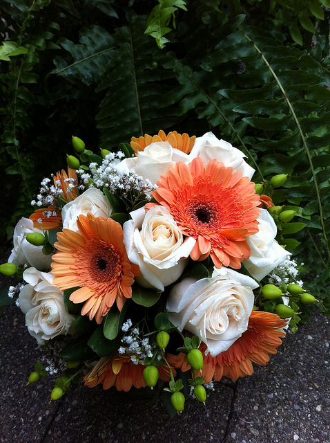 6 Orange Gerberas 6 White roses in Hand Bunch with Orange wrap