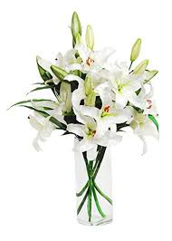 12 white Liliums Vase