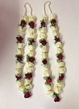 Two Garlands of red and white roses