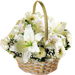 6 white lilies 6 White roses 6 white gerberas in a basket